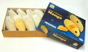 Mango No.4 Namdokmai