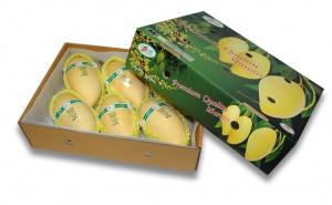 Golden Namdokmai Mango
