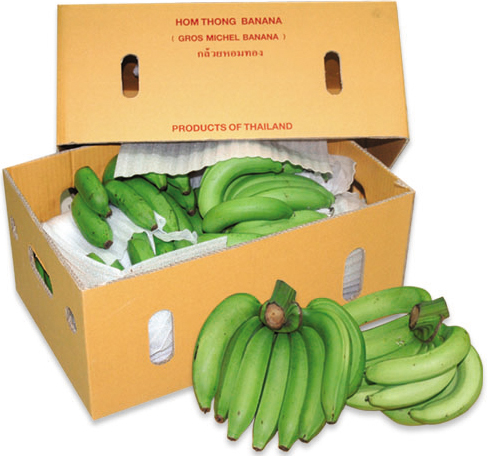banana-supplier-thailand