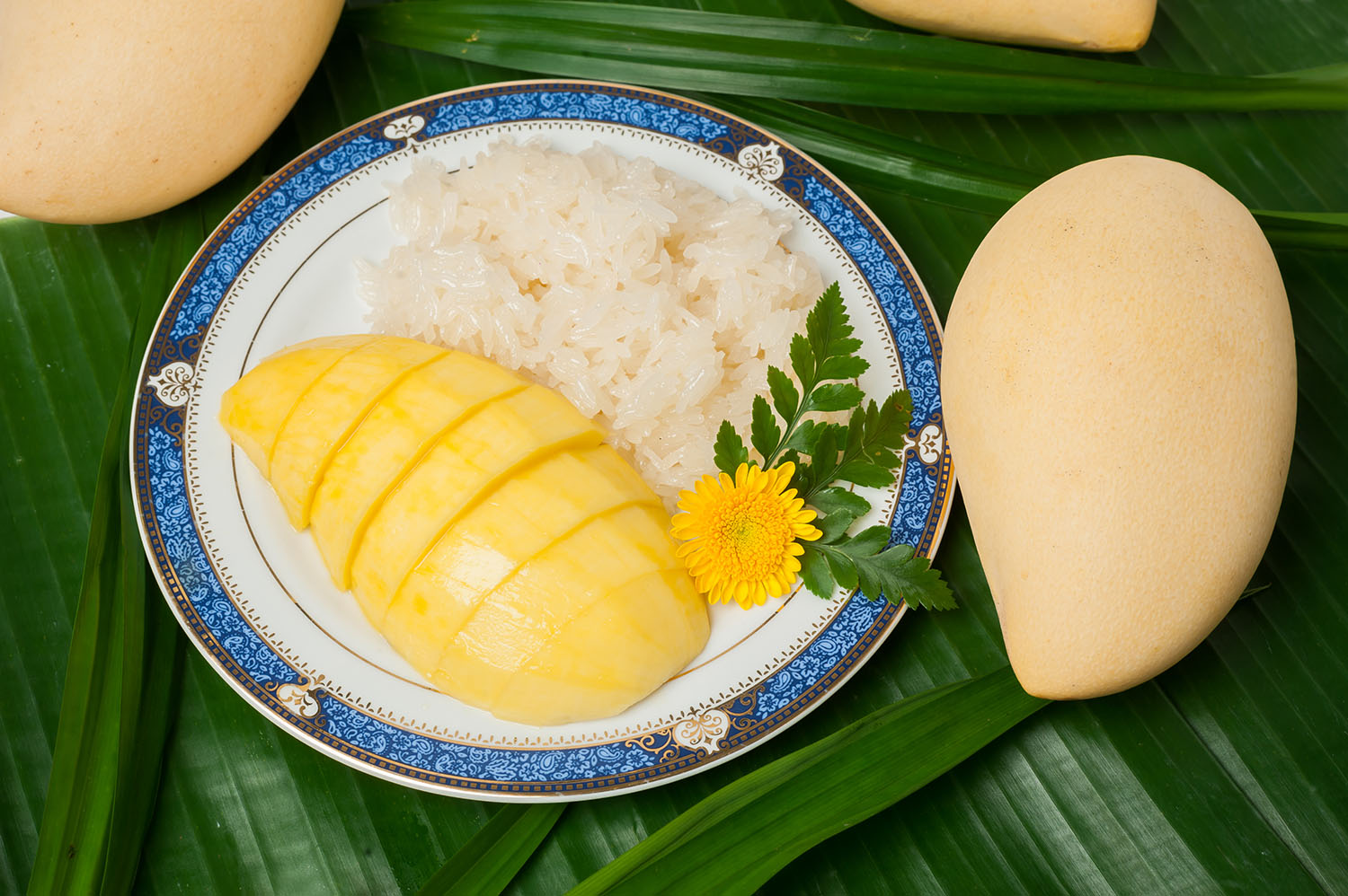 <b>Mango Sticky Rice</b>