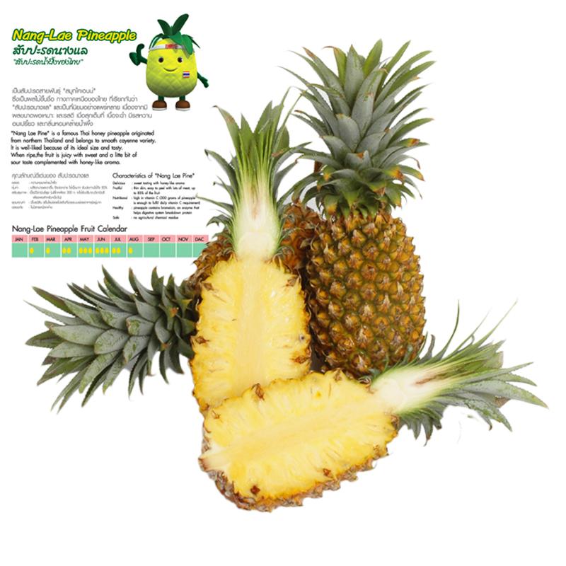 <b>Nang Lae Pineapple</b>