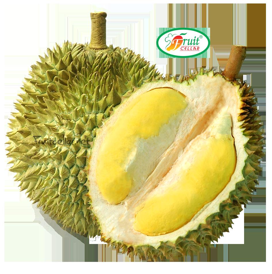<b>Durian</b>
